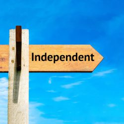difference between Independent and public adjusters