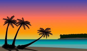 florida designated home state license