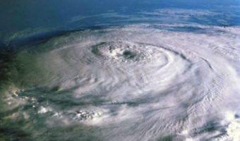 hurricane claims adjuster