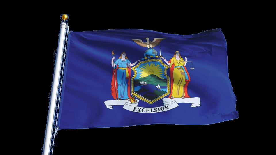 New York Insurance Adjuster License - AdjusterPro®