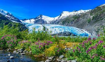 Become an Alaska Adjuster