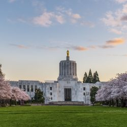 Become an adjuster in Oregon