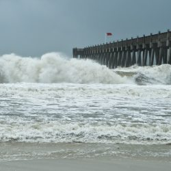 2020 hurricane season for adjusters