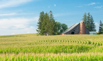 Become an adjuster in Iowa