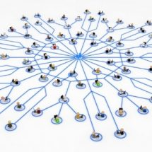 Centralized Adjuster Licensing